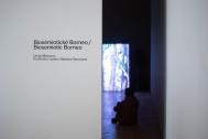 Biosémiotické Borneo