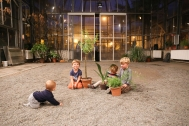Botanická zahrada – performance