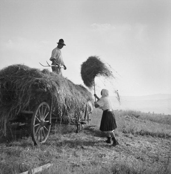 Ferdinand Bučina, z nevydané knihy Vzpomínka na Javorník, 1942