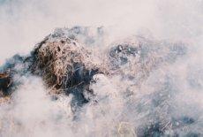 Tomáš Hrůza, Untitled, from the series Village Romance, 2016