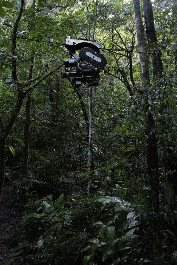 Daniel Steegmann Mangrané, 16 mm, 2008-2011, filmová projekce ve smyčce, zvuk, 4 minuty 54 vteřin
